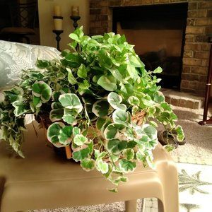 Rustic White Birch Woven Basket with Faux Plants